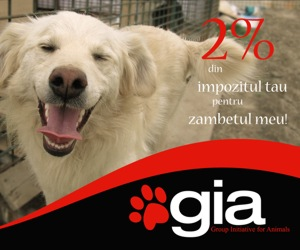 GIA- Group Initiative for Animals