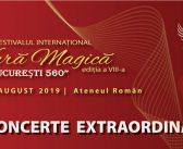 Concertele Festivalului Vara Magică 2019
